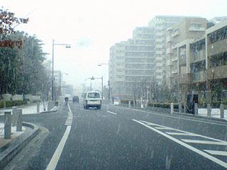 初雪だ!!