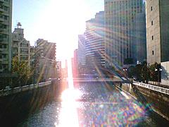 朝日に照らされる目黒川