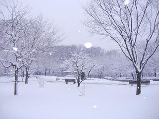 雪の花の丘公苑