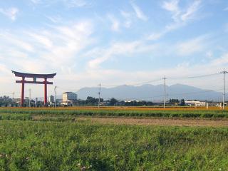小泉稲荷神社・大鳥居