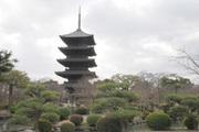 庭園と五重塔