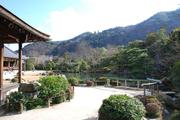 書院横から曹源池・嵐山を望む