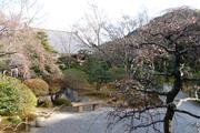 多宝殿前の庭園