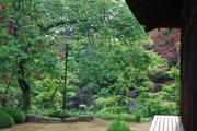 客殿(家光誕生の間)前の庭