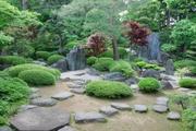 書院(春日局化粧の間)の庭