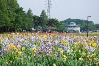 花の丘公苑