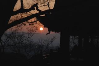 清水寺の夕陽