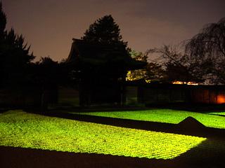 方丈前庭のライトアップ