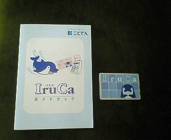 IruCaって知ってる?