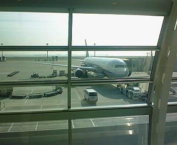今朝の羽田空港第2ターミナル